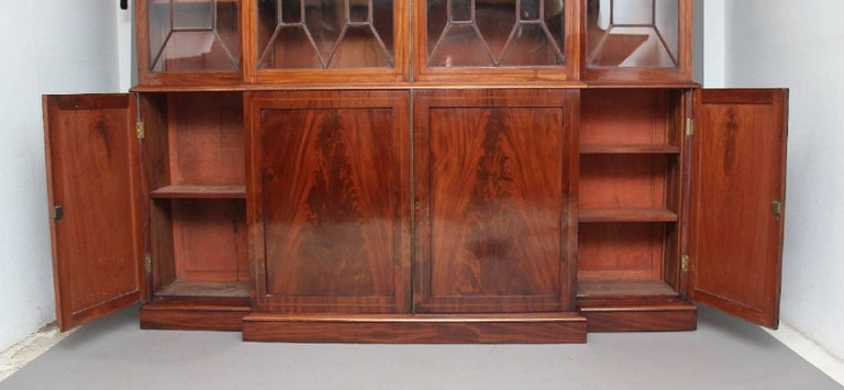 19th Century Mahogany Breakfront Bookcase For Sale 2