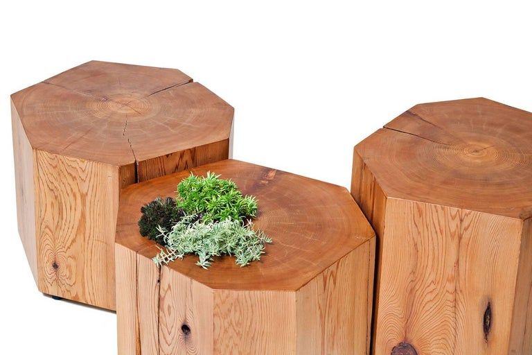 Nurselog Side Table / Planter in Western Red Cedar with Planter Insert In New Condition For Sale In Vancouver, BC