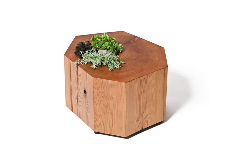 Modern Nurselog Side Table / Planter in Western Red Cedar with Planter Insert For Sale