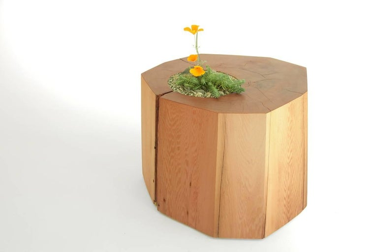 These western red Cedar Nurselog side tables are dual-purpose, bringing a touch of the forest into your home. Mimicking rain forest stumps that grow mosses and ferns from their tops, a round recycled glass insert allows a small arrangement of plants