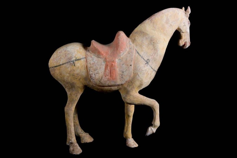 Magnificent Tang Dynasty Prancing Horse, TL Test by ASA Francine Maurer In Excellent Condition For Sale In San Pedro Garza Garcia, Nuevo Leon