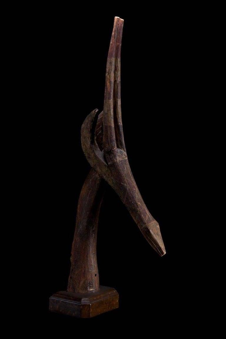 Primitive Dance Head Ornament Representing an Antelope Head, Burkina Faso, Africa For Sale