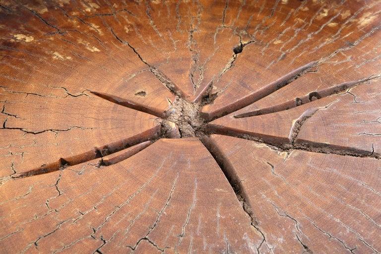 Varnished Stool