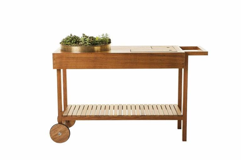 Woodwork Bar Cart in Tropical Brazilian Hardwood, Contemporary Design For Sale