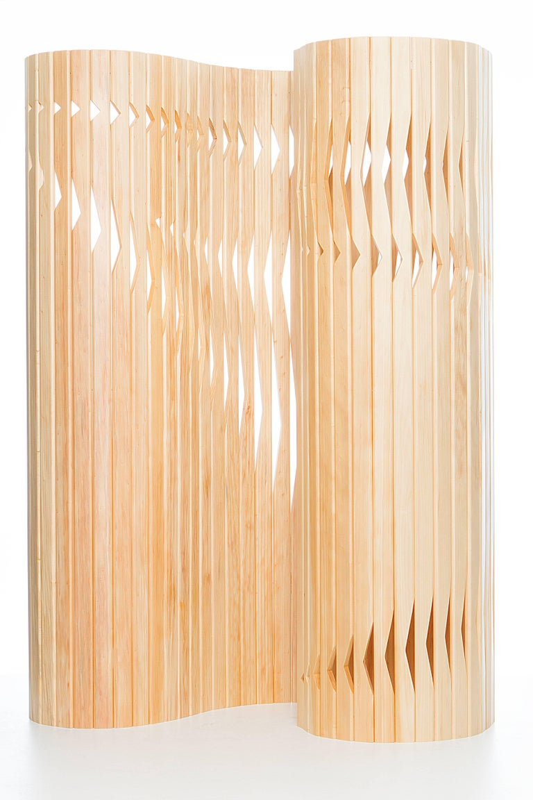 Wood Partition Screen, Foldable, Flexible, Brazilian Design 3
