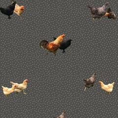 Helen's Yard-Chicken Printed Wallpaper in Charcoal