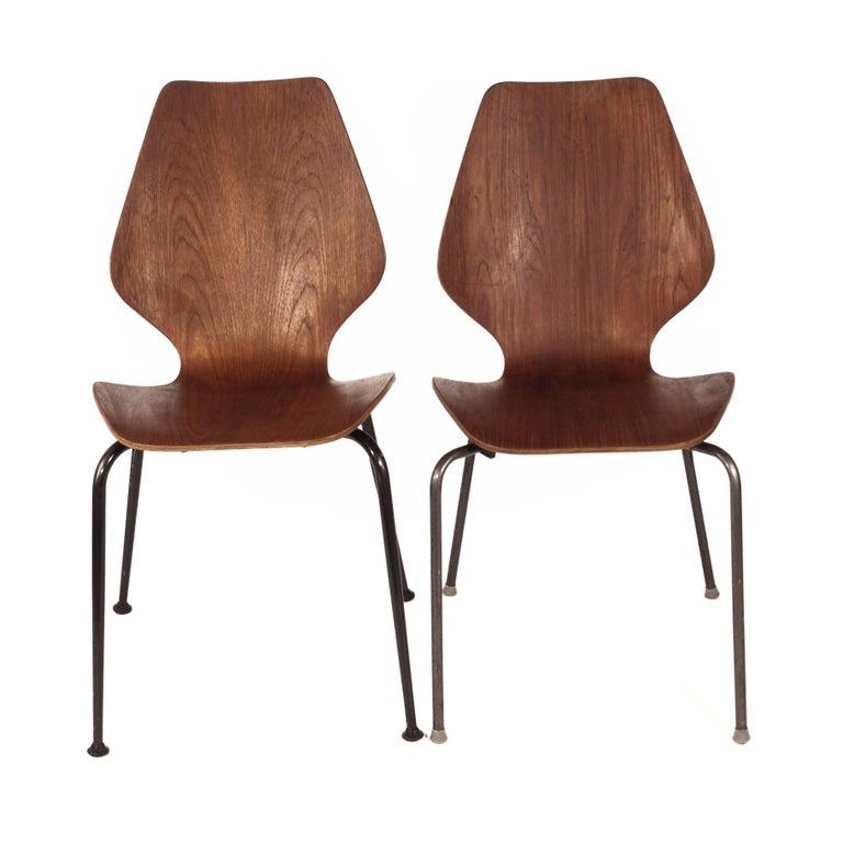Danish Chairs in Bent Teak 1950s with Dark Grey Painted Steel Legs