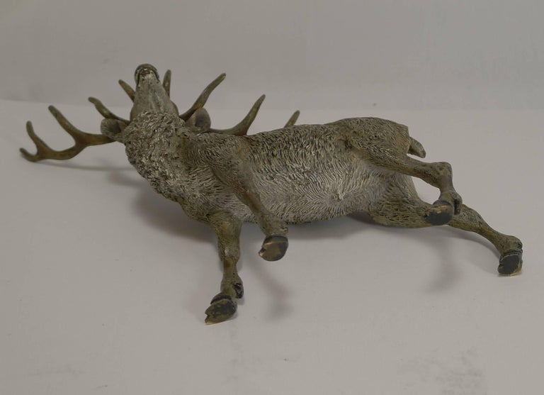 A good sized late Victorian Vienna bronze in the form of the most handsome Stag.  Beautifully executed and retaining the original paint.  c.1890 measuring 9