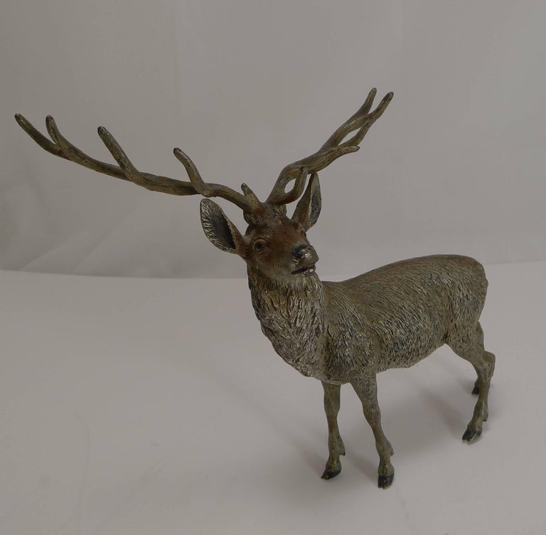 Cold-Painted Large Antique Austrian Cold Painted Bronze Stag Figure c.1890 For Sale