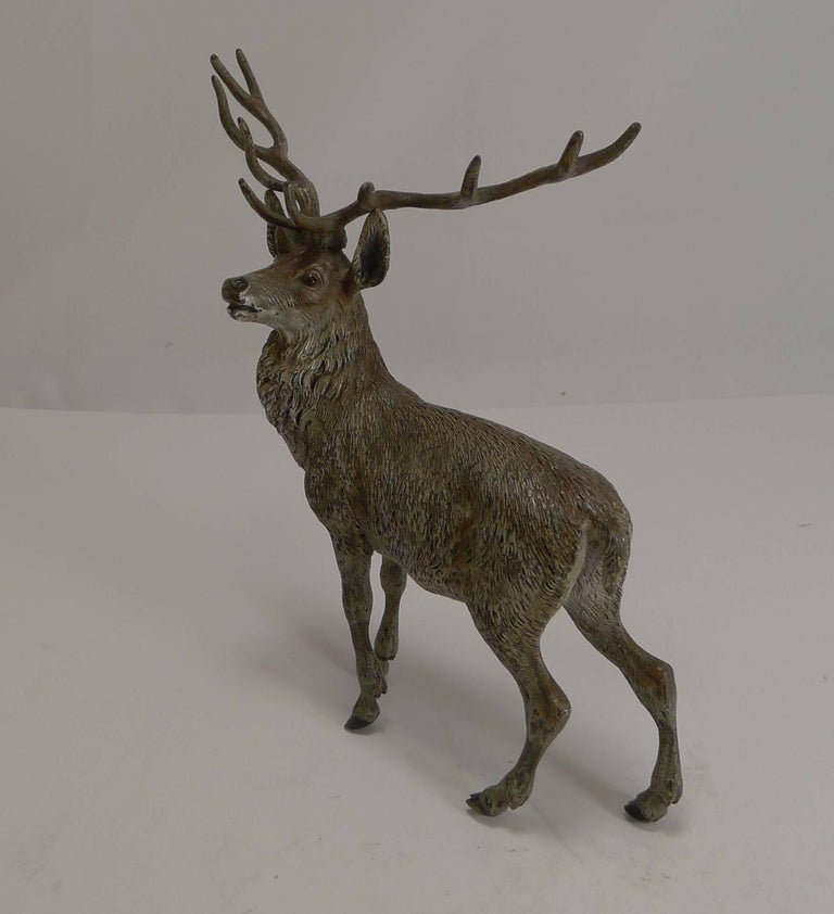 Large Antique Austrian Cold Painted Bronze Stag Figure c.1890 In Excellent Condition For Sale In London, GB