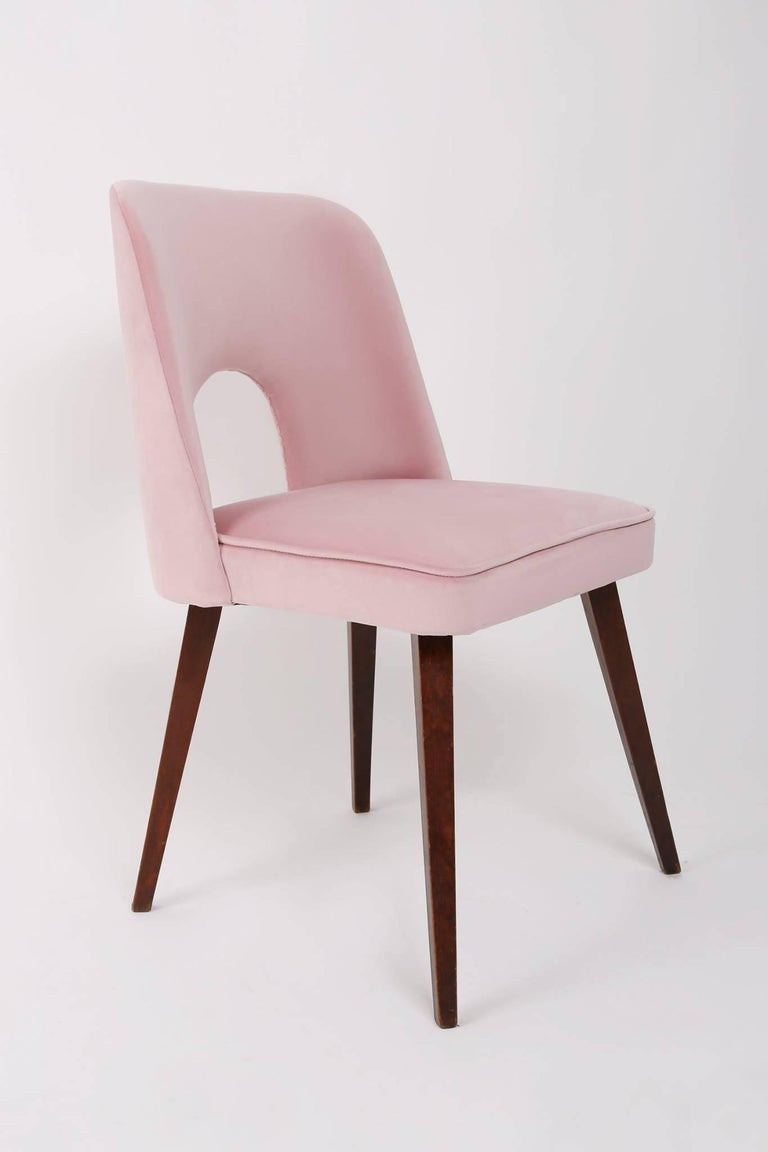 Pleasant Set Of Six Baby Pink Shell Chairs 1960S Dailytribune Chair Design For Home Dailytribuneorg