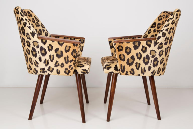 Set of Two Mid-Century Modern Leopard Print Chairs, 1960s, Germany In Excellent Condition For Sale In 05-080 Hornowek, PL
