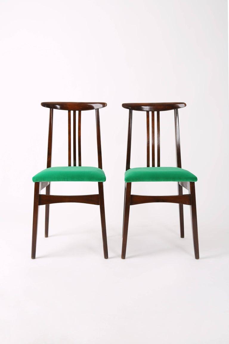 Restaurant Furniture Poland : Pair of zielinski chairs type b green velvet