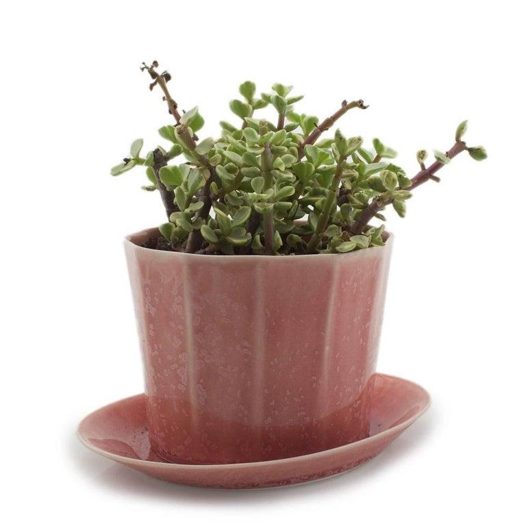 Native Planter Matte Pink Planter Modern Contemporary Glazed Porcelain For Sale 6