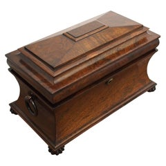 Late George IV Rosewood Sarcophagus Tea Caddy