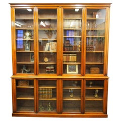 Victorian Red Walnut Cabinet Bookcase or Display Cabinet, circa 1880