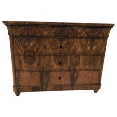 Tulip Biedermeier Chest