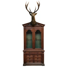 19th Century German Gun Cabinet with Stag Trophy Mount