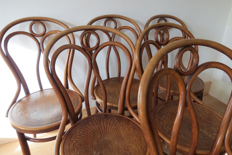 Set of 6 Jacob and Joseph Kohn dining chairs, model number 36. Made from bentwood beech. Date from the early 1900s. In wonderful condition, they retain the original finish, nicely patinated.  In good original condition, with some signs of wear to