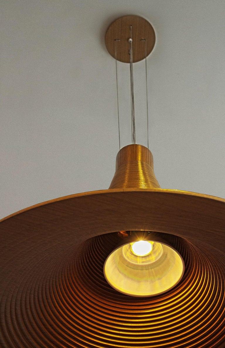Modern Itaipava Pendant Lighting For Sale