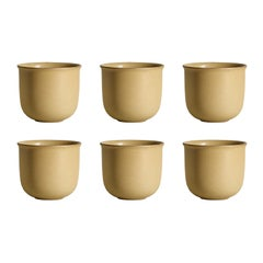 Ochre, Teacups, Set of 6, Slip Cast Ceramic, N/O Service Collection