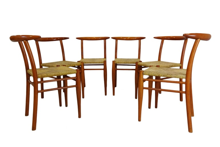 Dining Set  - Cherrywood Incorporating 6 Philippe Starck Tessa Nature Chairs For Sale 1