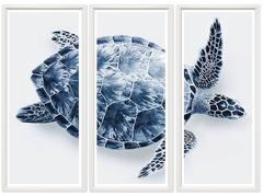 Sea Turtle Triptych