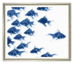 Blue and White Fish Print
