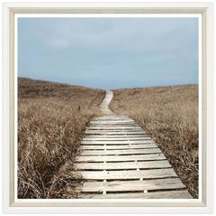 Boardwalk Through Beach Grass Print