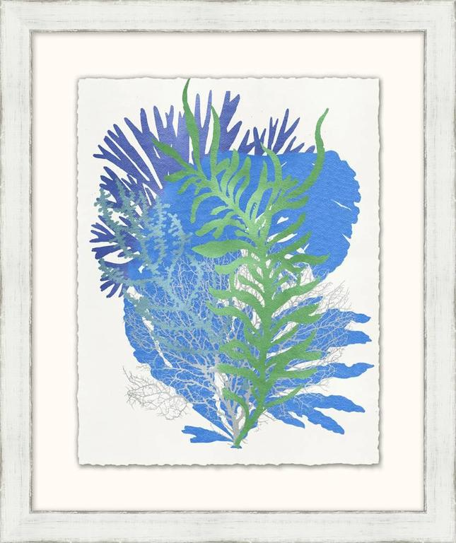 Graphic Sea Life Prints 1