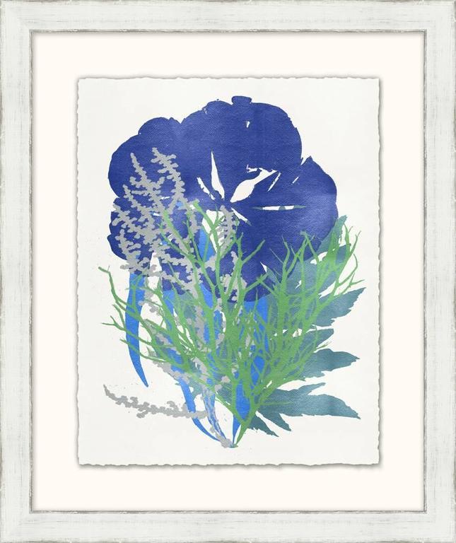 Graphic Sea Life Prints In Good Condition For Sale In Bridgehampton, NY