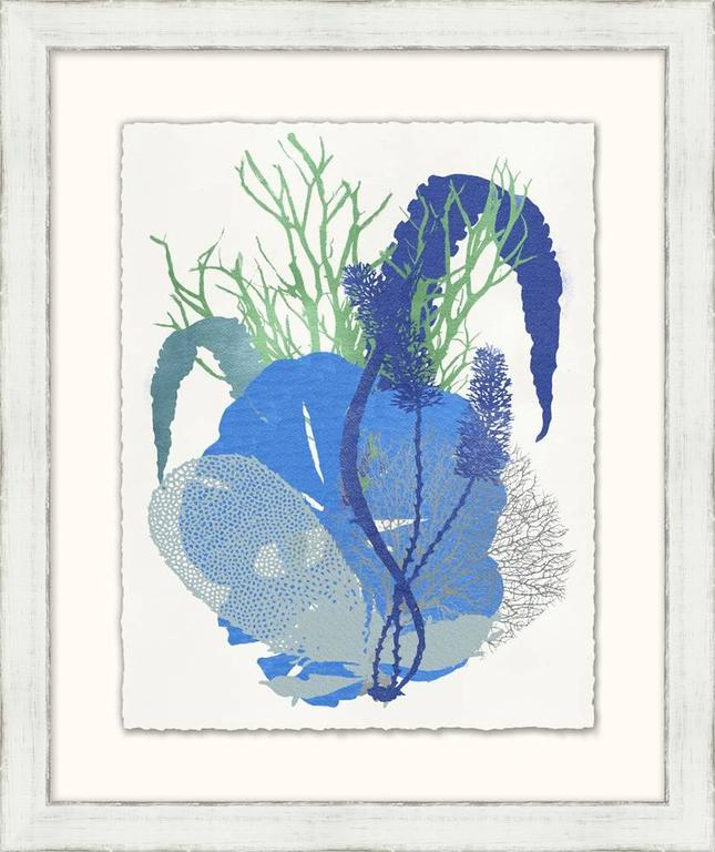 Graphic Sea Life Prints 5