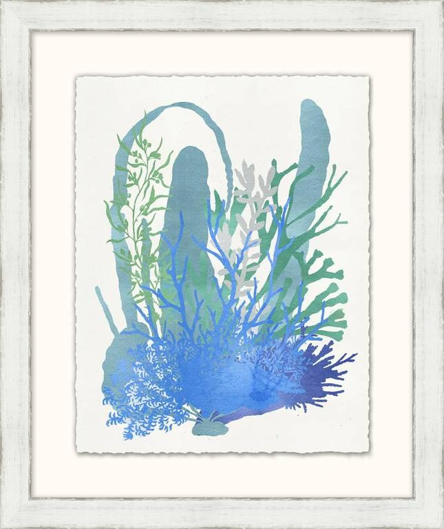 Graphic Sea Life Prints 6