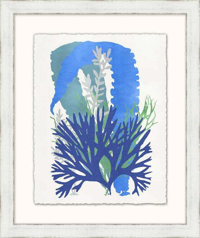 Graphic Sea Life Prints 7