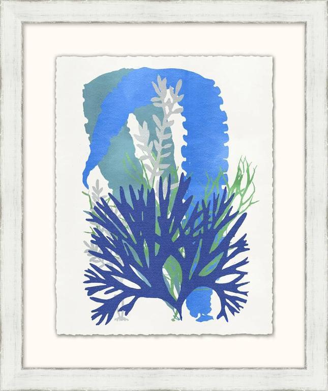 Graphic Sea Life Prints For Sale 3
