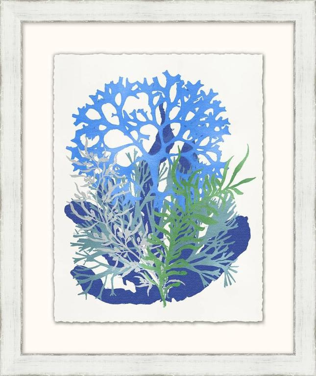 Graphic Sea Life Prints 8