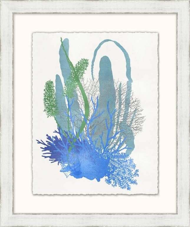 Graphic Sea Life Prints 9