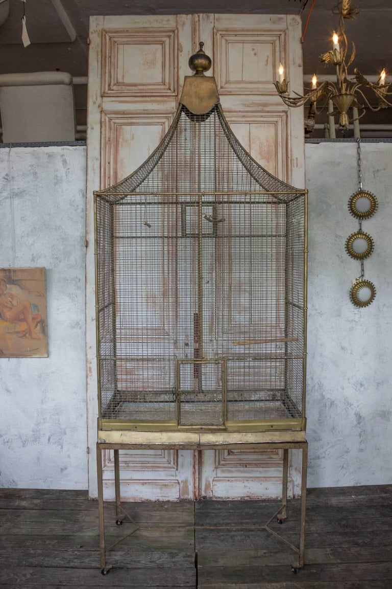 Very large 1900s, French gilt iron bird cage on metal base.