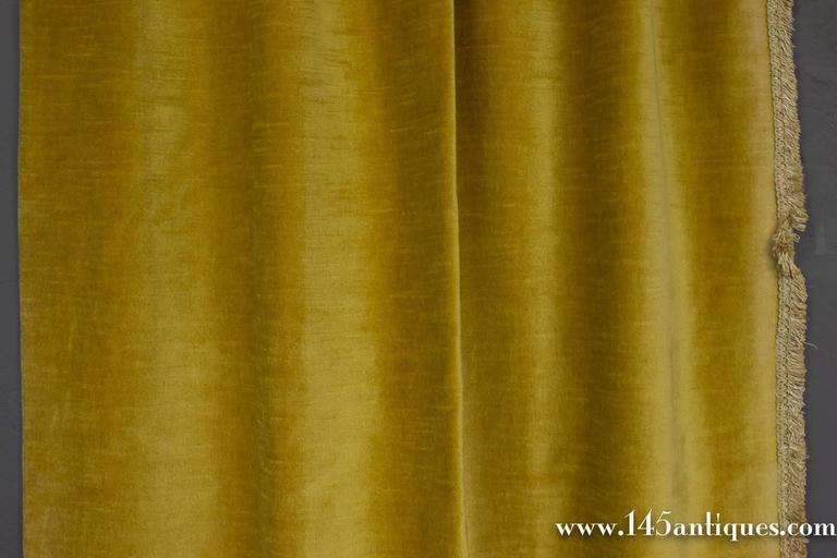 Pair Of Rich Gold Velvet Drapes 3