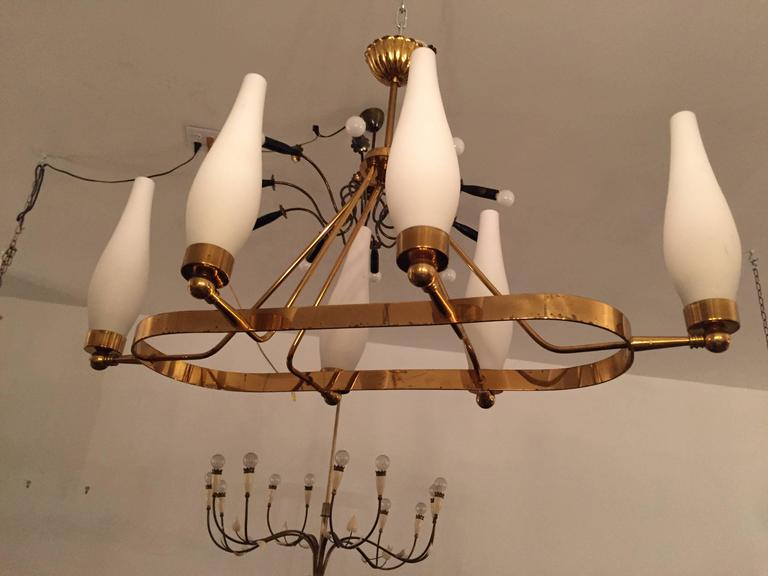 A great original 1960s French Regency style chandelier done in a polished brass oval frame with white opaline tulip glass shades. Rewired.