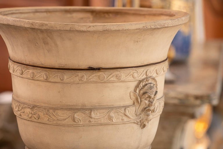 19th Century French Terracotta Planter In Good Condition For Sale In New Orleans, LA