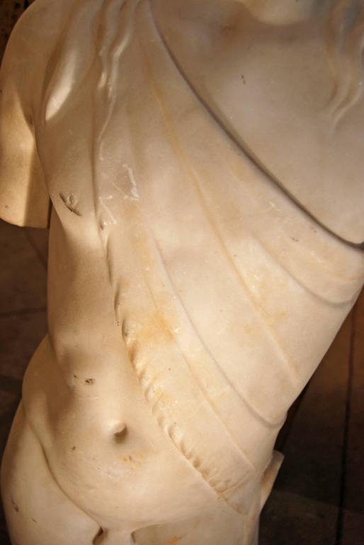 19th Century Carved Marble Torso 3