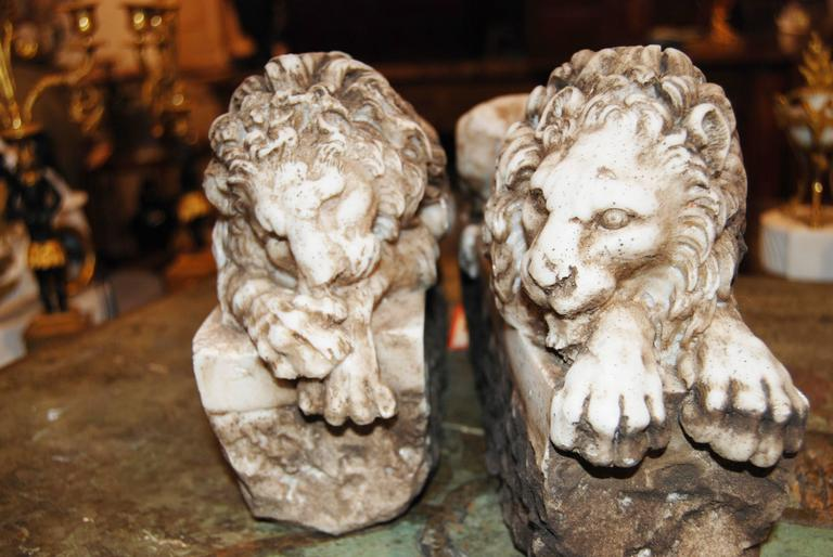 Pair of Marble Lions 3
