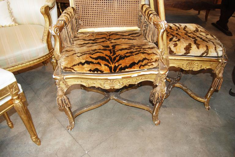 Set of 12 19th Century Giltwood and Cane Dining Chairs 2