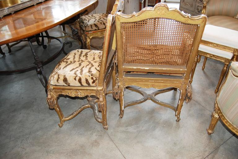 Set of 12 19th Century Giltwood and Cane Dining Chairs 3