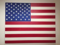 American Flag, No. 1, 2017 by J. Wohnseidler