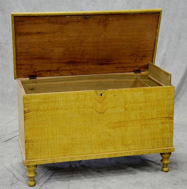 Federal American Grain Painted Blanket Chest in Ochre Yellow, Pennsylvania, circa 1830 For Sale