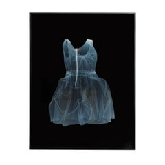 NICK VEASEY Lanvin Dress, 2011 in Custom Frame