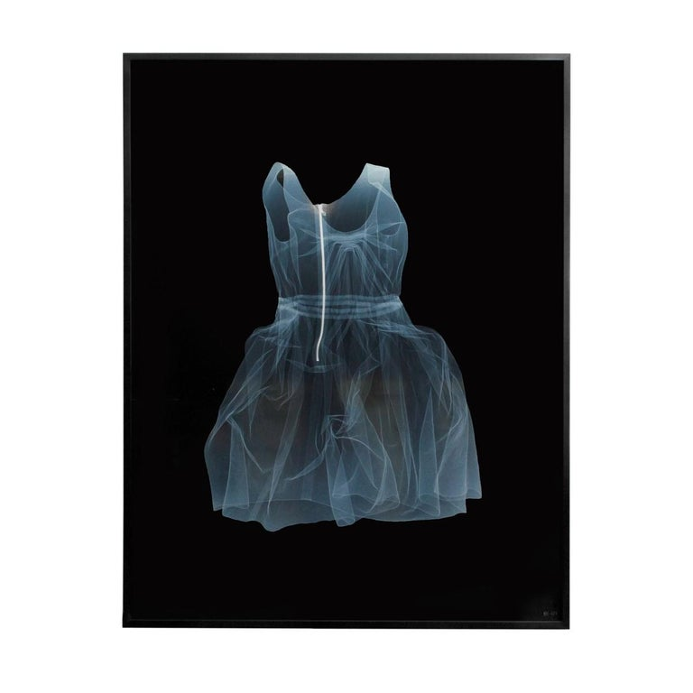 NICK VEASEY Lanvin Dress, 2011 in Custom Frame For Sale