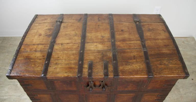 Antique French Elm Coffer/Trunk with Iron Strap Work For Sale 1